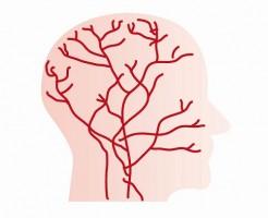 ミノキシジルは血管拡張効果で発毛するわけではない!?