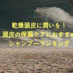 乾燥で頭皮カサカサ|フケ・かゆみにおすすめ保湿シャンプーランキング